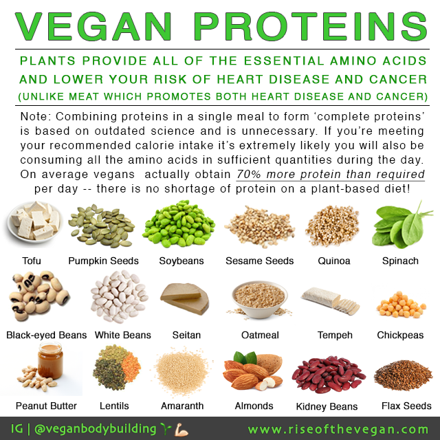What Are The Best Foods For Vegan Protein