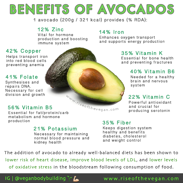 how to use the seed avocado