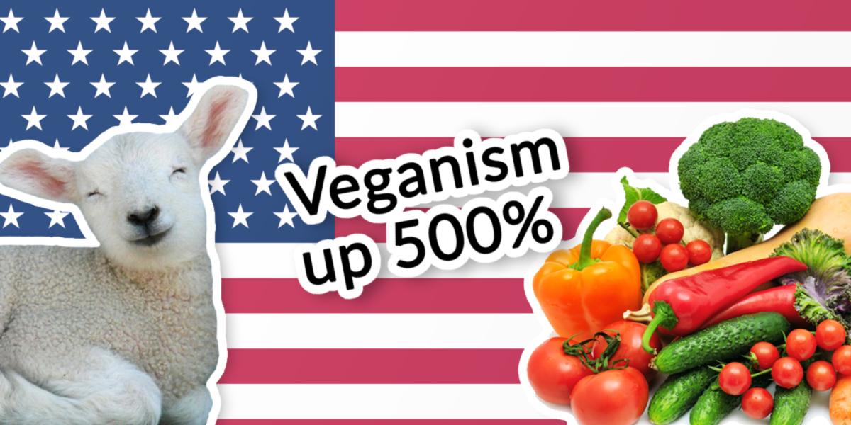 veganism and a sustainable lifestyle essay Veganism essays: over actions speak louder than words personal essay - veganism the oppressing face of madness in the mirror of society.