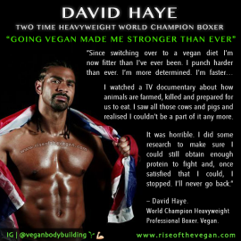 David Haye vegan