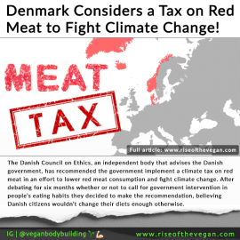 Denmark Considers a Tax on Red Meat to Fight Climate Change
